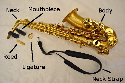 Parts of the Saxophone