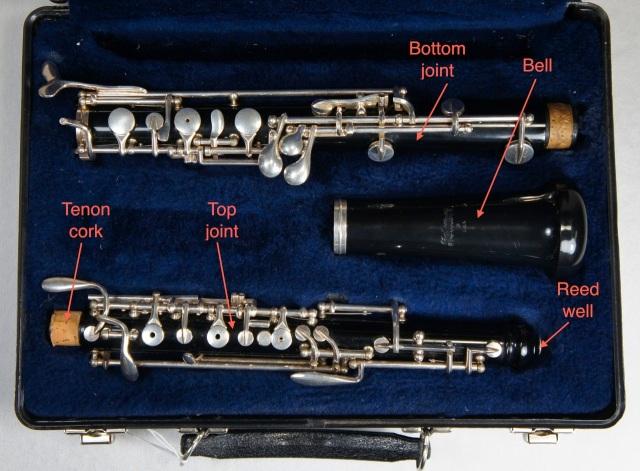 Student Model Oboe
